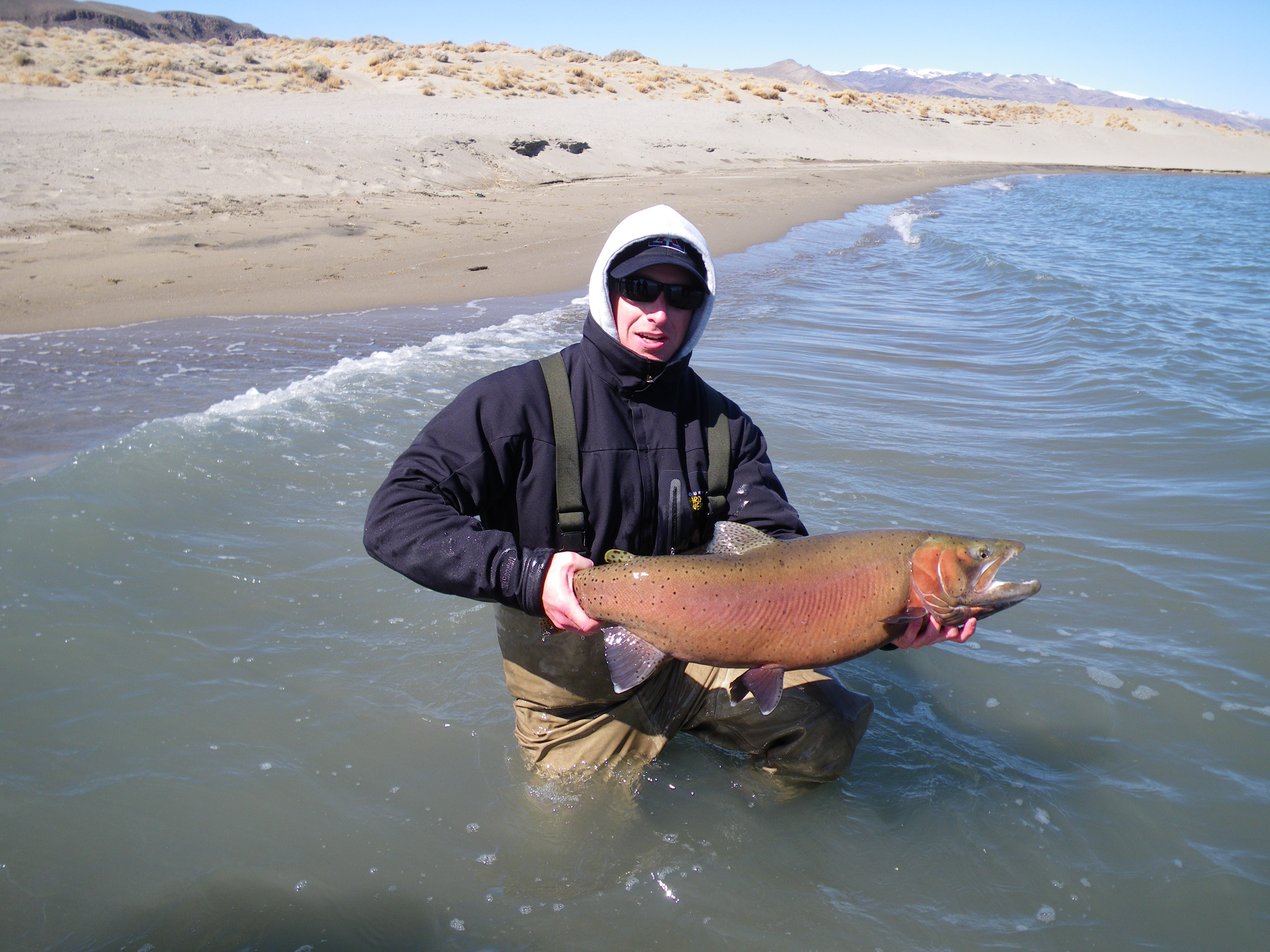 1000 images about fishing obsession on pinterest fly for Pyramid lake fishing report