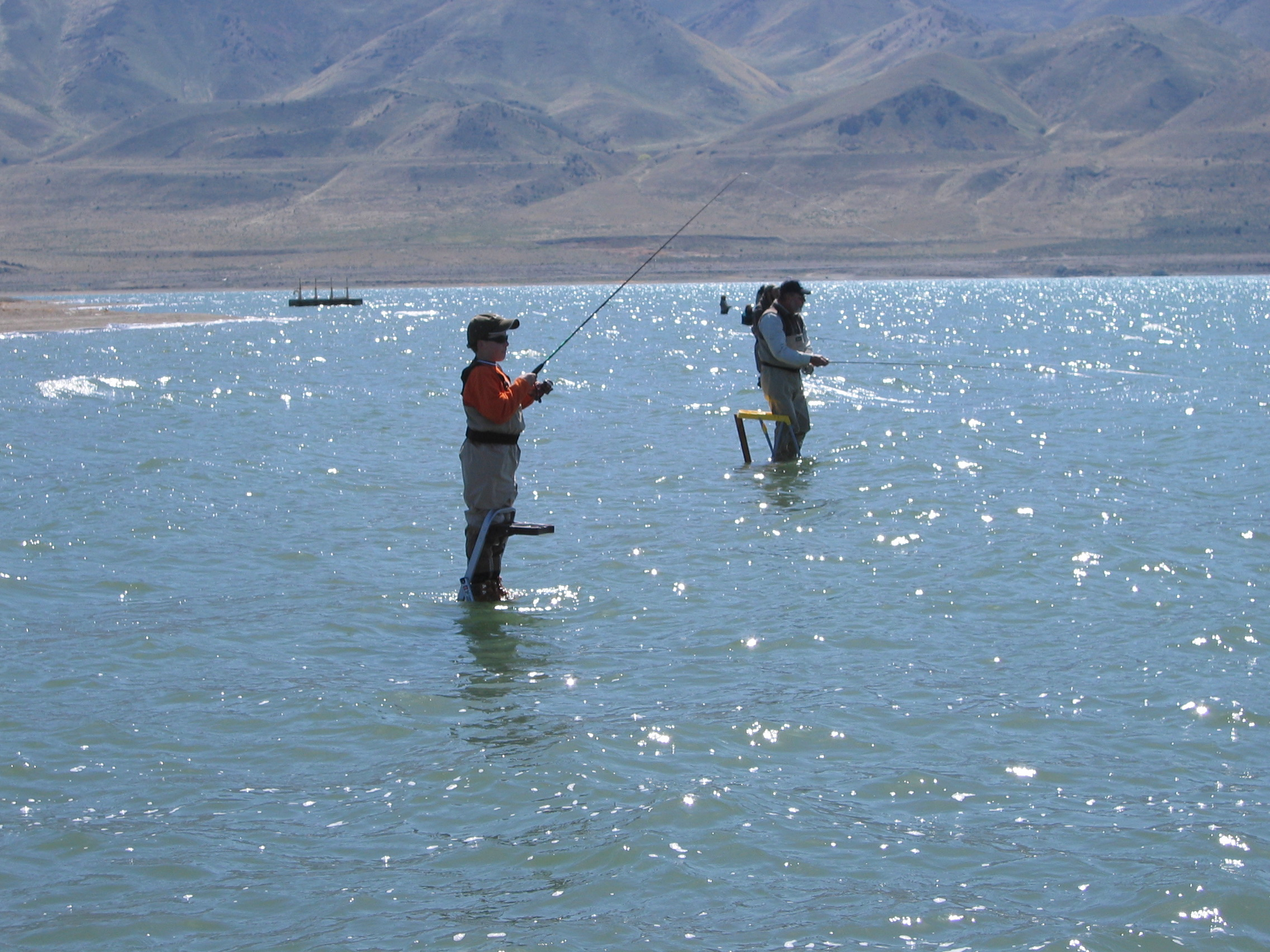 Beaches pyramid lake fly fishing for Fly fishing nevada