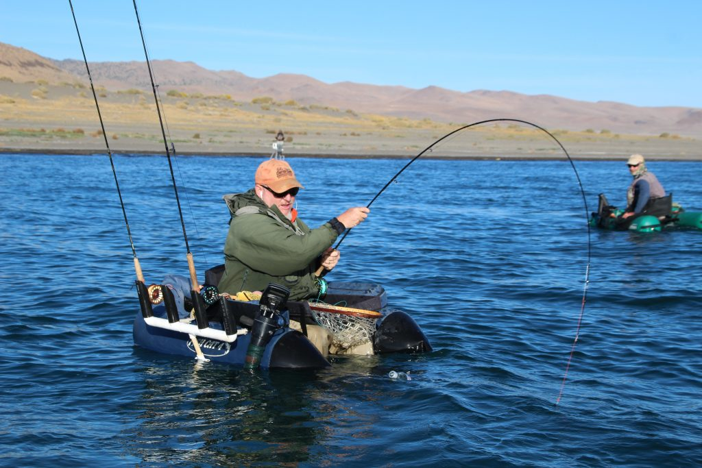 Fishing report october 10th 2016 pyramid lake fly fishing for Fishing license nevada